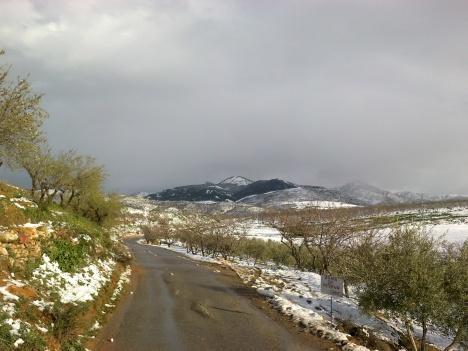 Camino de Macairena